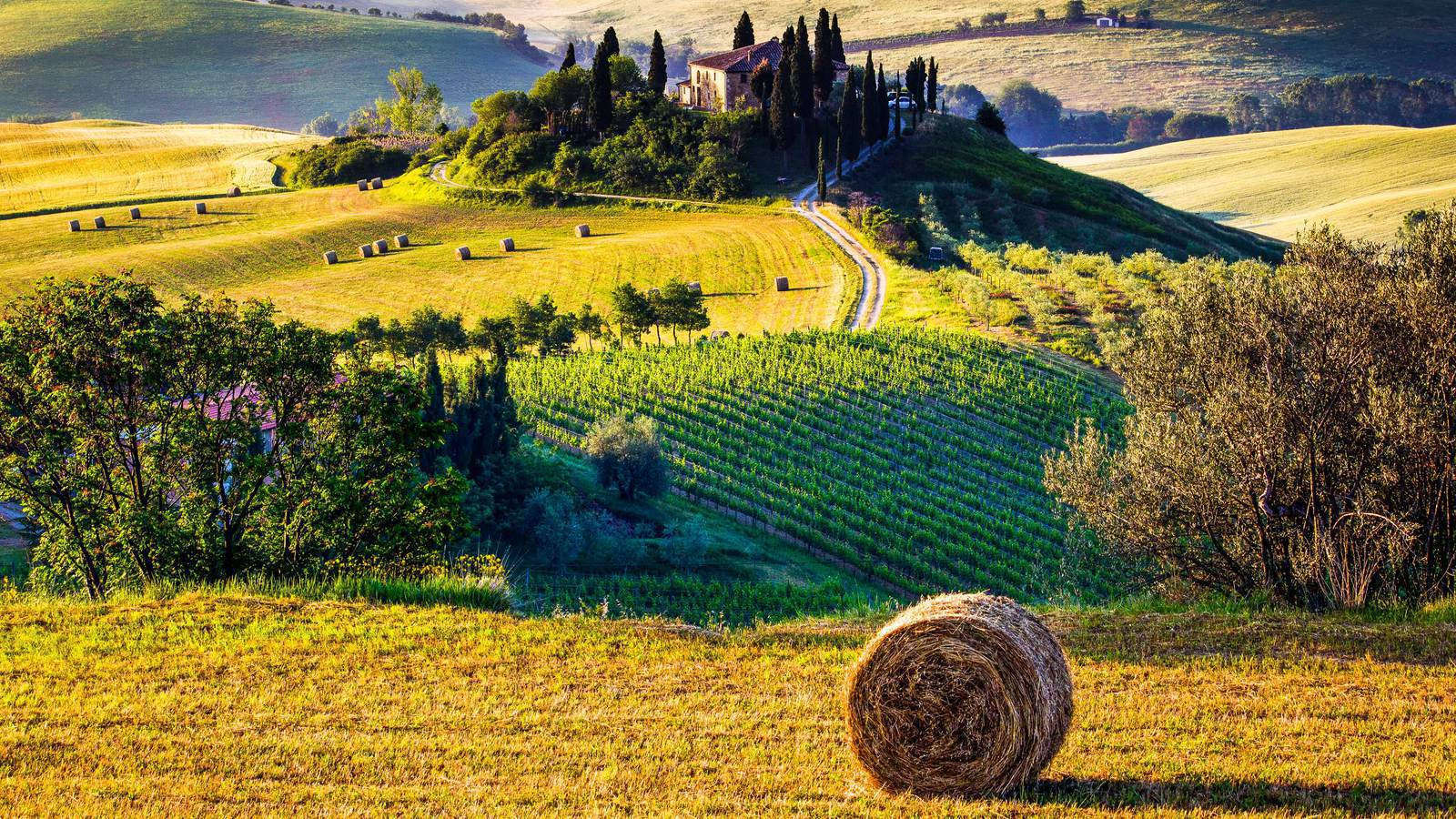 Bicicletta in Toscana