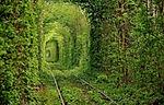 Nella cittadina di Klevan, nel nord-ovest dell'Ucraina, la natura si è plasmata intorno ad un'antica ferrovia usata in epoca industriale per ricreare un tratto - poco più lungo di un chilometro - dove il tempo sembra non esistere e tutto sembra abbracciare chi vi passeggia. Sono stati gli stessi abitanti della cittadina di Klevan a dare il nome al Tunnel dell'Amore perché le coppie amano venire a passeggiare lungo questo sentiero sia in estate, quando la vegetazione è di un verde rigoglioso, sia durante i caldi colori autunnali.
