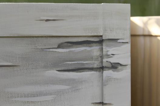 Silver birch paint effect