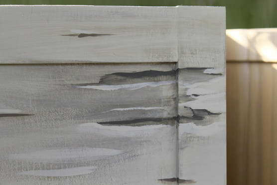 Silver birch paint effect