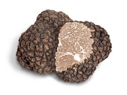 burgundy truffle
