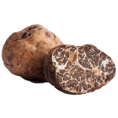 Fresh Bianchetto Truffles (Tuber Borchii Vitt) 4 oz