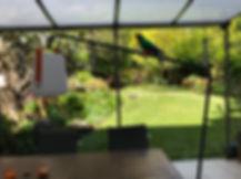 jardin 4.jpg