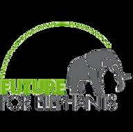 Future For Elephants