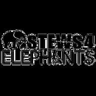 STEWS 4 Elephants