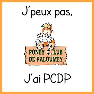 carrépcdp.png