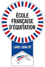Inf - Logo EFE - V1.jpg