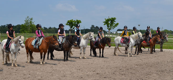 PONEY CHEVAL VACANCES COLONIES