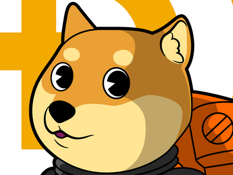 The reboot of Dogeparty, history of DOGE wallet DDogepartyxxxxxxxxxxxxxxxxxxw1dfzr worth $412,464,68