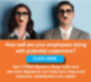 Signature Canada's special offer to try its Mystery Shopping Program including 3 free calls