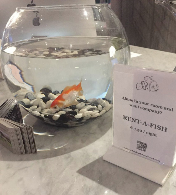 Un p'tit poisson avec ça?