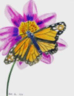 Pretty as a butterfly.jpg
