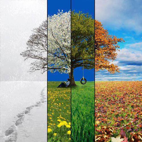 Soneto: las estaciones