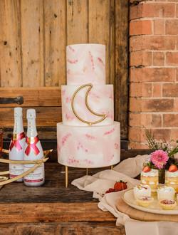 Pink Celestial cake