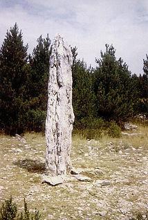 mégalithes, menhirs, vue d'un menhir phallique dressé dans les bois
