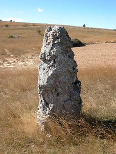 mégalithes, menhir, vue du menhir simple 2