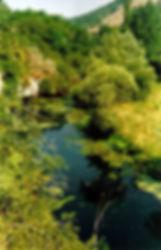 Vue 1 (depuis l'arche de pierre) de la rivière s'écoulant des résurgences de Cabouy et de Saint-Sauveur, enserrée dans la végétation.
