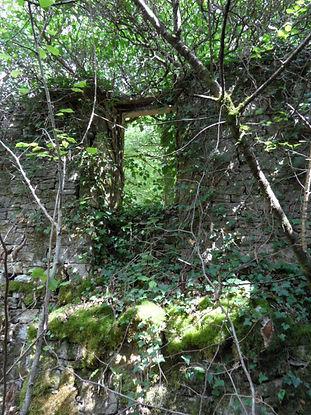 Moulin à turbines de Sirogne. Vue d'une fenêtre.