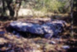 domen, dolmen simple, dolmen dans les bois