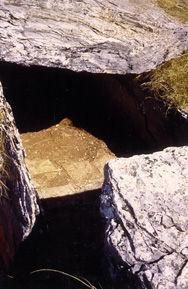 dolmen, dolmen avec un pavage intérieur