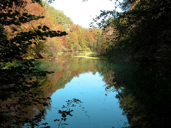 Enserré par la végétation, vue de la rivière qui s'écoule de la résurgence du gouffre de Saint-Sauveur.