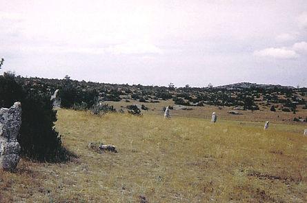cromlech, cercle de pierres dressées, vue élargie d'un cromlech