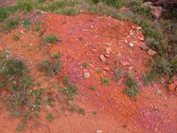 photo de dune rouge rappelant le sol martien