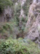 Photo montrant la végétation foisonnante et l'étroitesse des gorges de San Jaume.