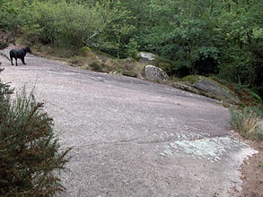 Vue d'une pente de granit vertigineuse, devant l'abri préhistorique de la Roche-aux-Fées.