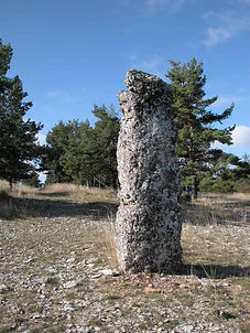 mégalithes, menhir, vue du menhir simple 4, appelé Pierre des deux évêques.