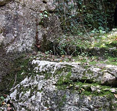 En dessous de l'arche de pierre, vue de déatil d'un partie du bief du moulin.