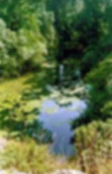 Vue 2 (depuis l'Arche de pierre) de la rivière qui s'écoule des résurgences de Cabouy et de Saint-Sauveur, enfouie sous la végétation.