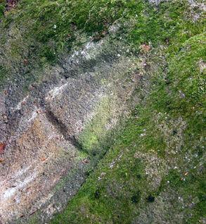 Les énigmes de Morenci, un des signes gravés sur les rochers