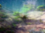 Vue 2 de la très belle résurgence du gouffre de Saint-Sauveur.
