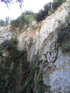 Photo montrant la végétation grimpante sur les parois des gorges de San Jaume.