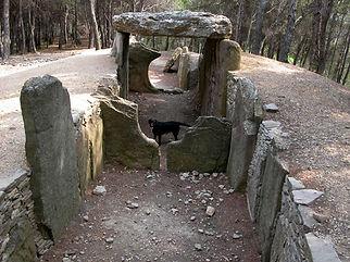 Photo : dolmen, très long dolmen nommé allée couverte, spécimen archéologique rare