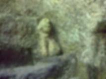 Chimère sculptée dans la carrière de sarcophages. Vue rapprochée.