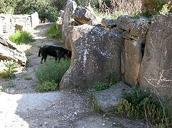 dolmen, allée couverte (très long dolmen), vue en perspective du couloir du dolmen