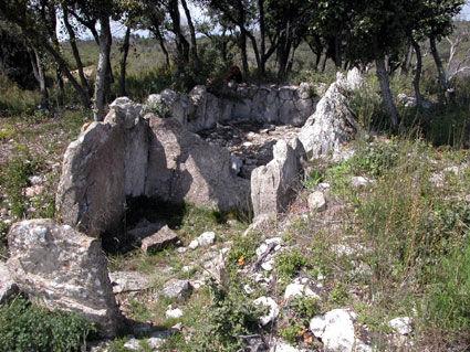 dolmen, allée couverte ruinée, très long dolmen