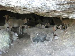 Intérieur de la grotte préhistorique de la Baumelle, éclairé.