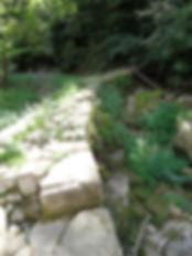 Moulin à turbines du Saut. Vue de la retenue sur la rivière.