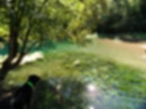 Vue 1 du grand gouffre de Cabouy et de sa résugence, tranparence de l'eau, végétation lacustre.