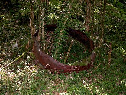 Marmite de charbonnier au fond crevé par la végétation, dans les bois.