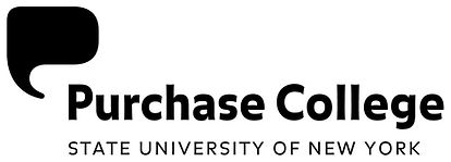 purchase college ICHS International Comm