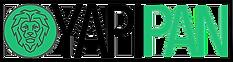 YapıPAN Site Logo.png