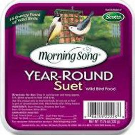 Suet-Year Round