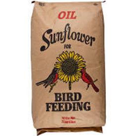 50 lb. Black Oil Sunflower Seeds