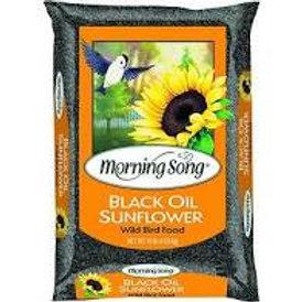 10 lb. Black Oil Sunflower Seeds
