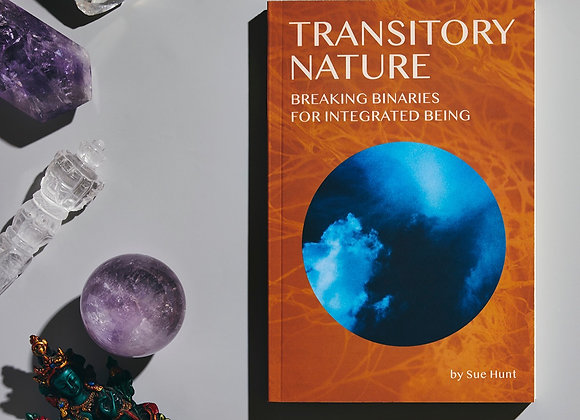 1:1 Session & Transitory Nature Paperback