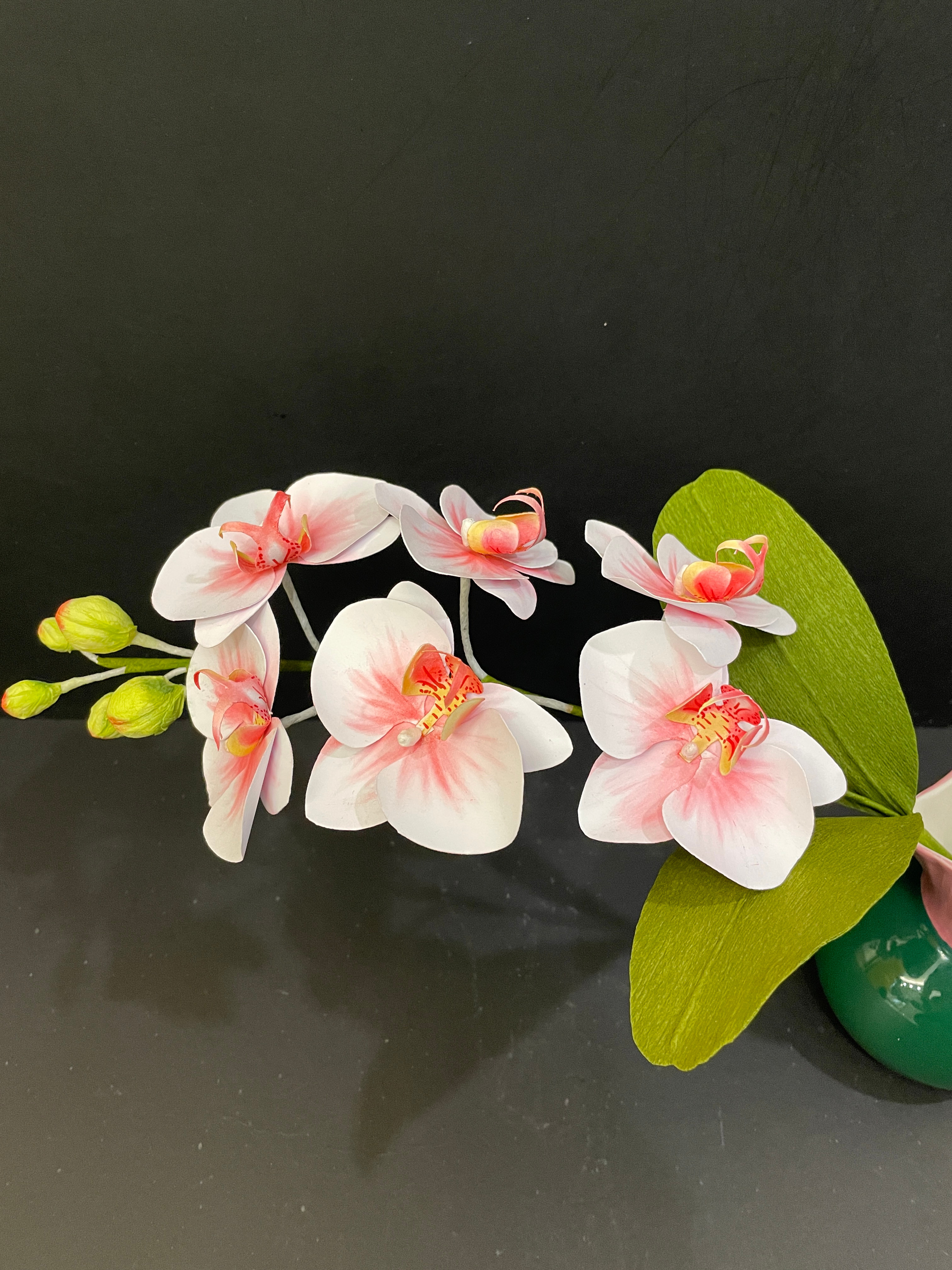 Workshop for orchids